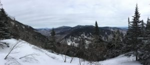 View from the top of Hellbrook Trail